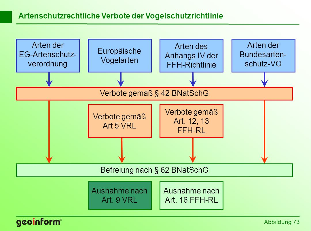 Artenschutzrechtliche Verbote der Vogelschutzrichtlinie