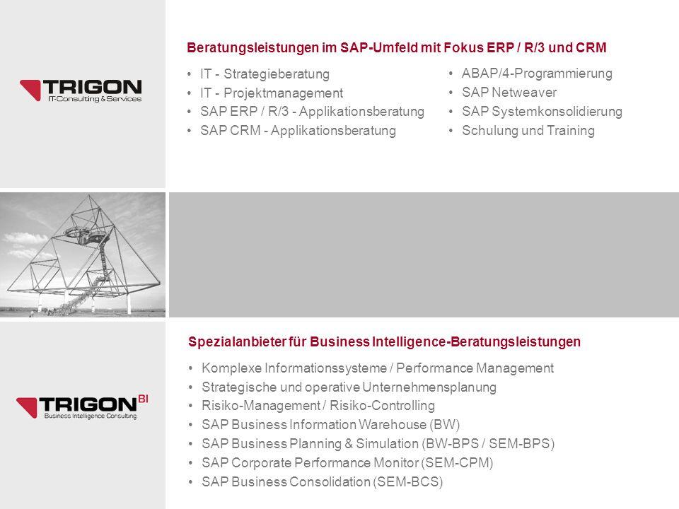 Beratungsleistungen im SAP-Umfeld mit Fokus ERP / R/3 und CRM