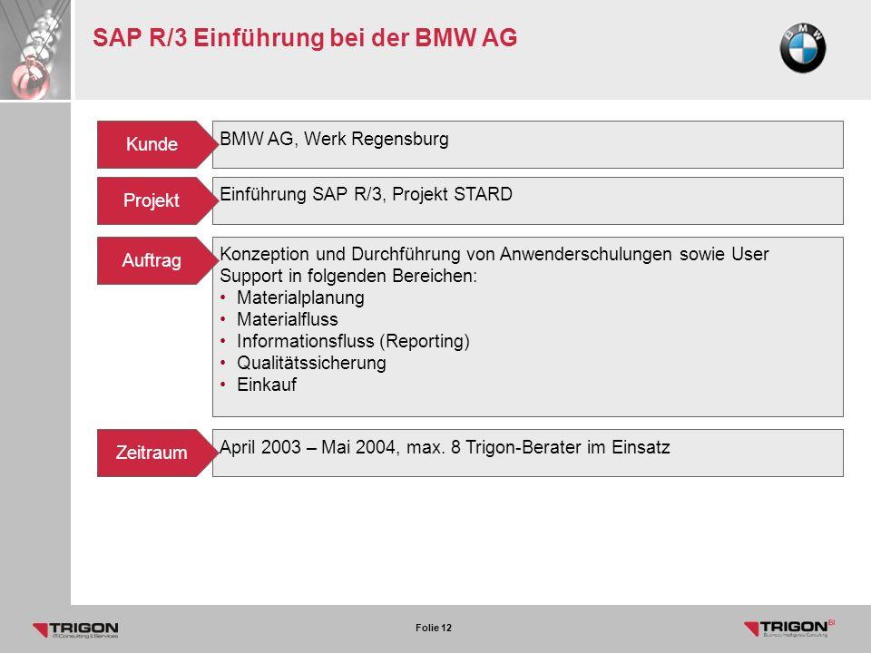 SAP R/3 Einführung bei der BMW AG