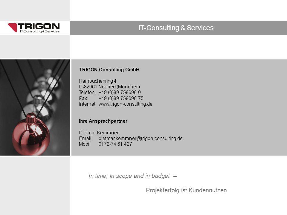 TRIGON Consulting GmbH