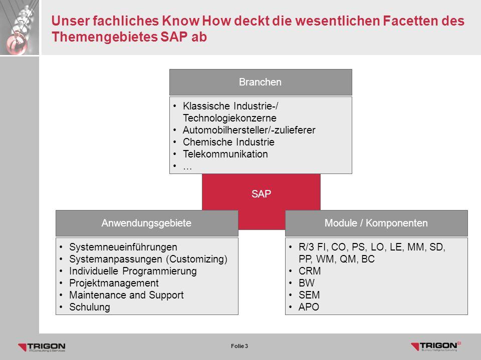 Unser fachliches Know How deckt die wesentlichen Facetten des Themengebietes SAP ab