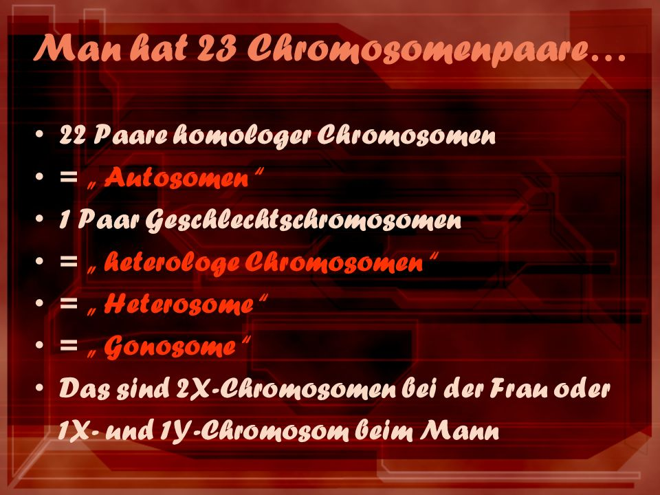 Man hat 23 Chromosomenpaare…