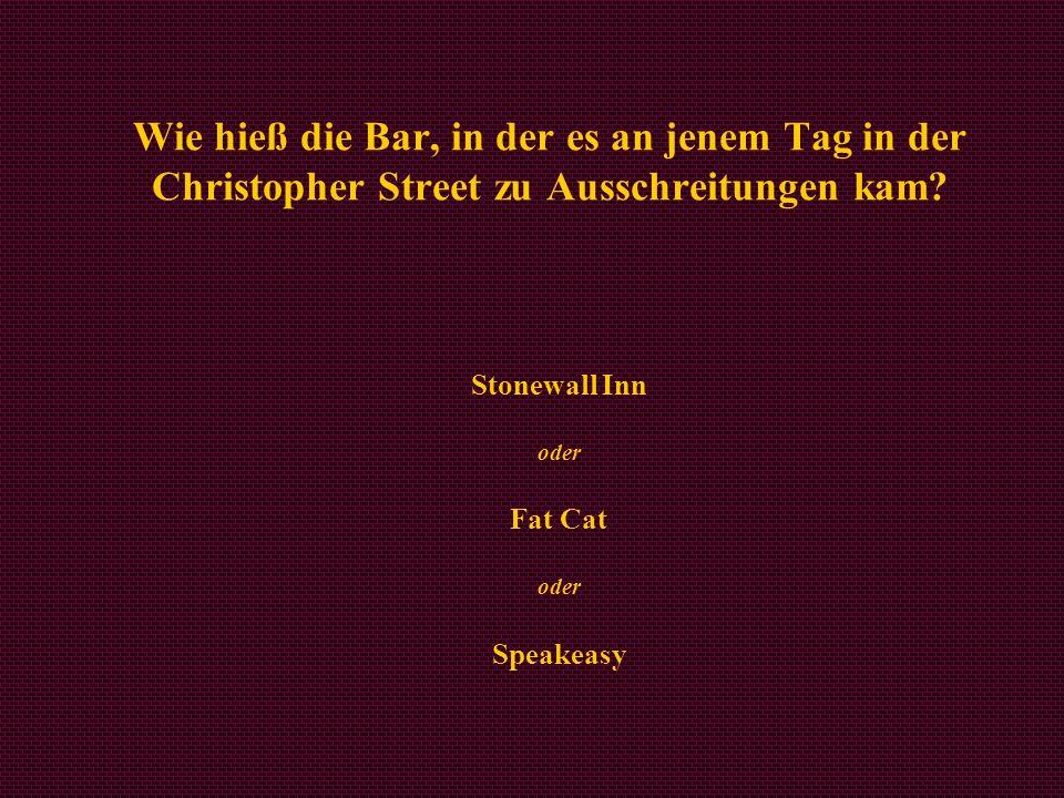Stonewall Inn oder Fat Cat oder Speakeasy