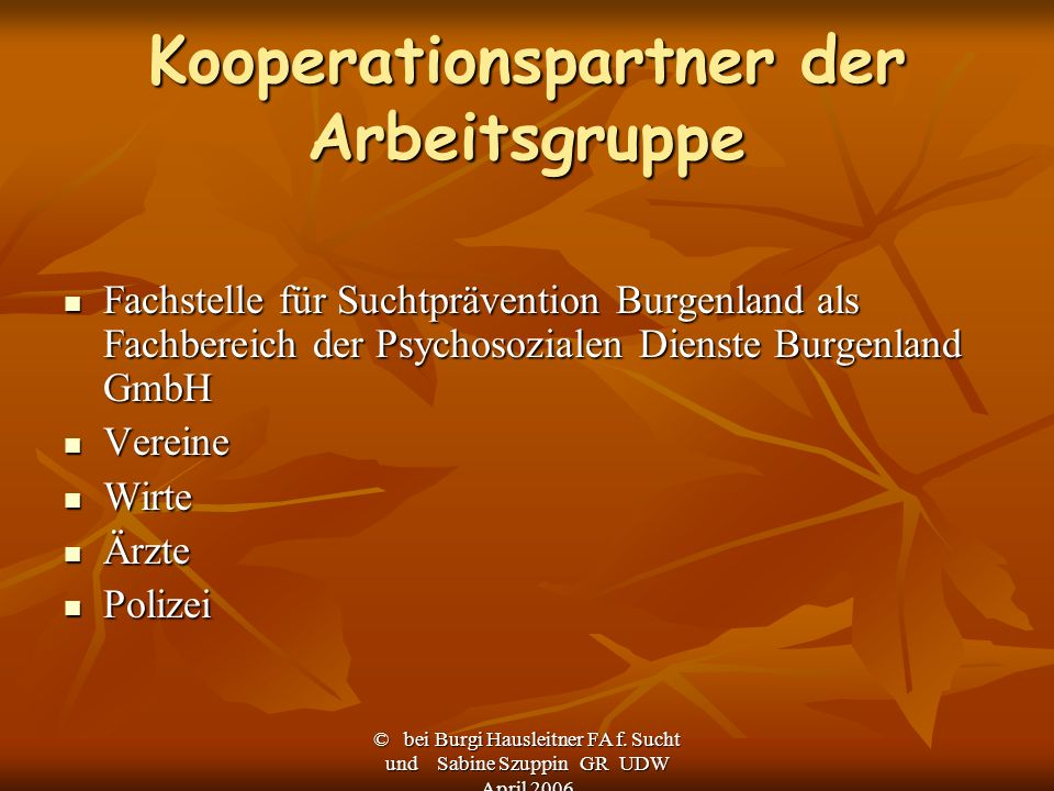 Kooperationspartner der Arbeitsgruppe