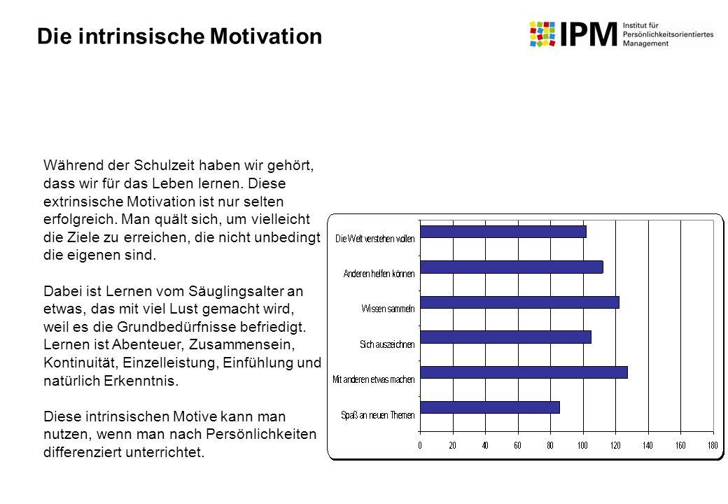Die intrinsische Motivation