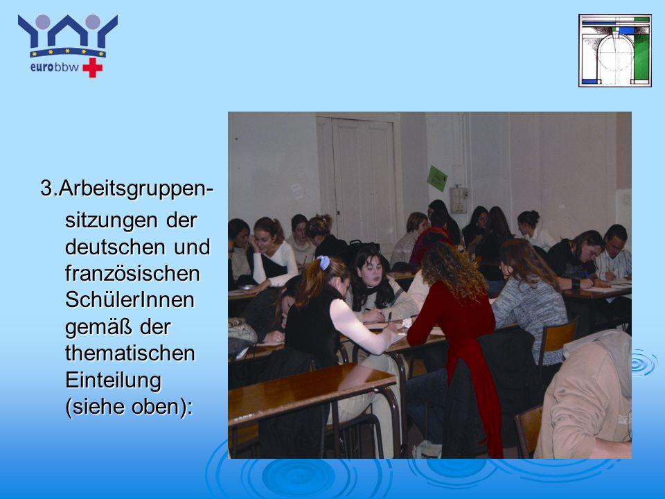 3.Arbeitsgruppen- sitzungen der deutschen und französischen SchülerInnen gemäß der thematischen Einteilung (siehe oben):