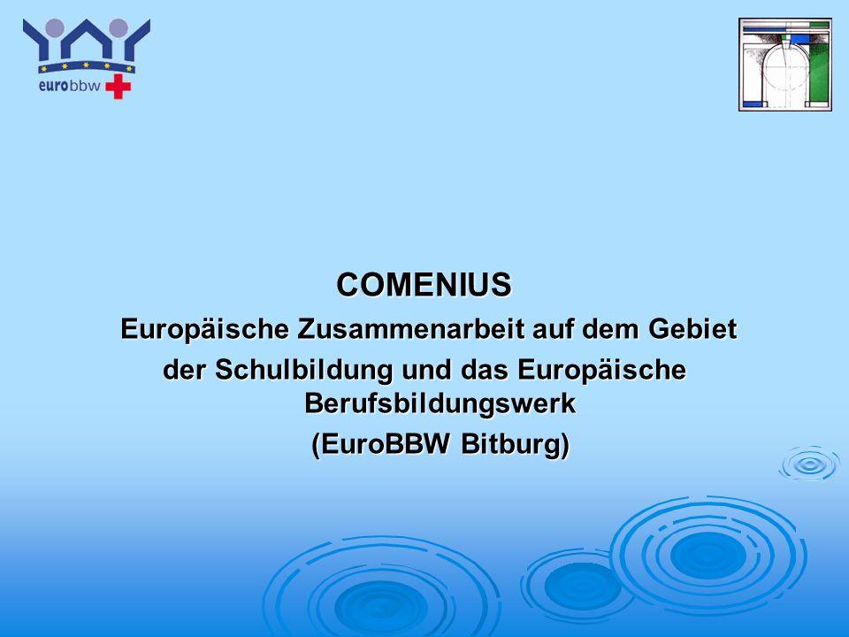 COMENIUS Europäische Zusammenarbeit auf dem Gebiet