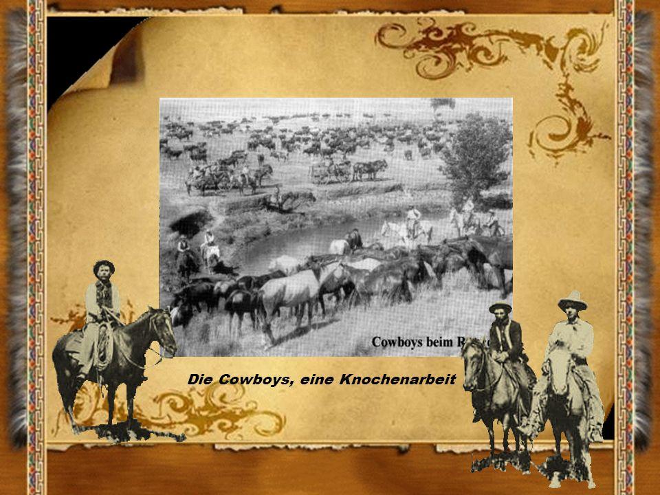 Die Cowboys, eine Knochenarbeit