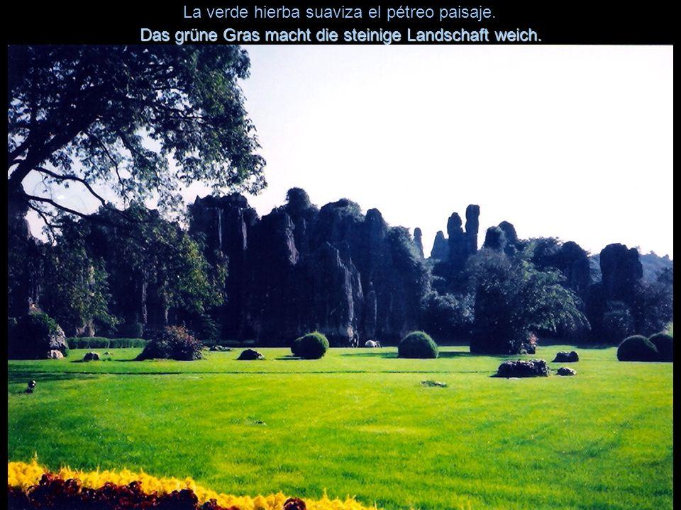 La verde hierba suaviza el pétreo paisaje.