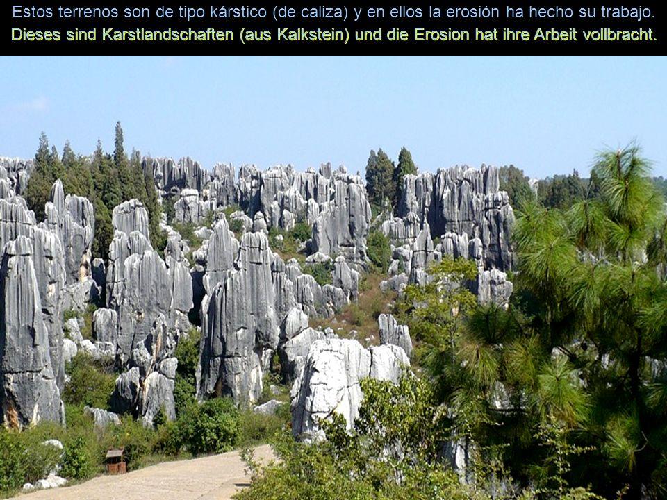 Estos terrenos son de tipo kárstico (de caliza) y en ellos la erosión ha hecho su trabajo.