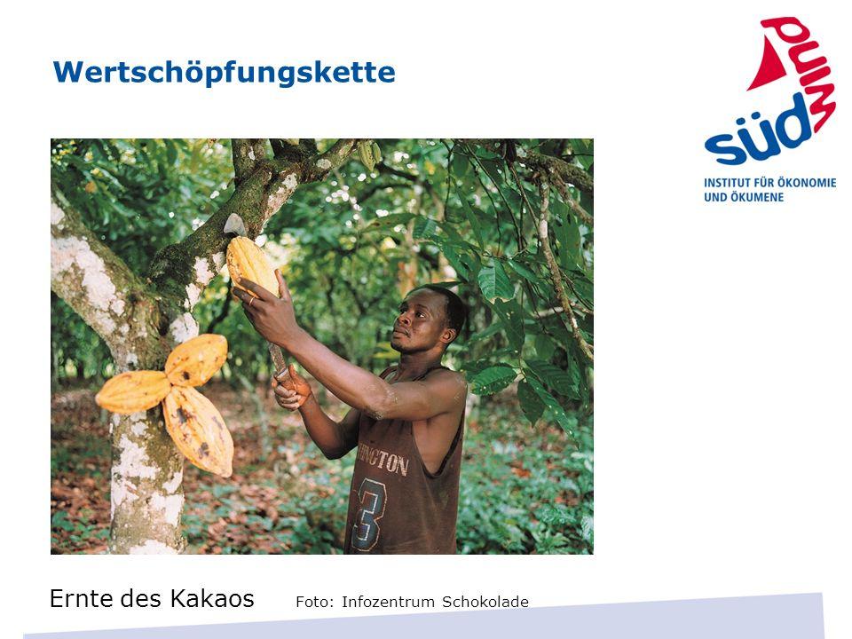 Wertschöpfungskette Ernte des Kakaos Foto: Infozentrum Schokolade