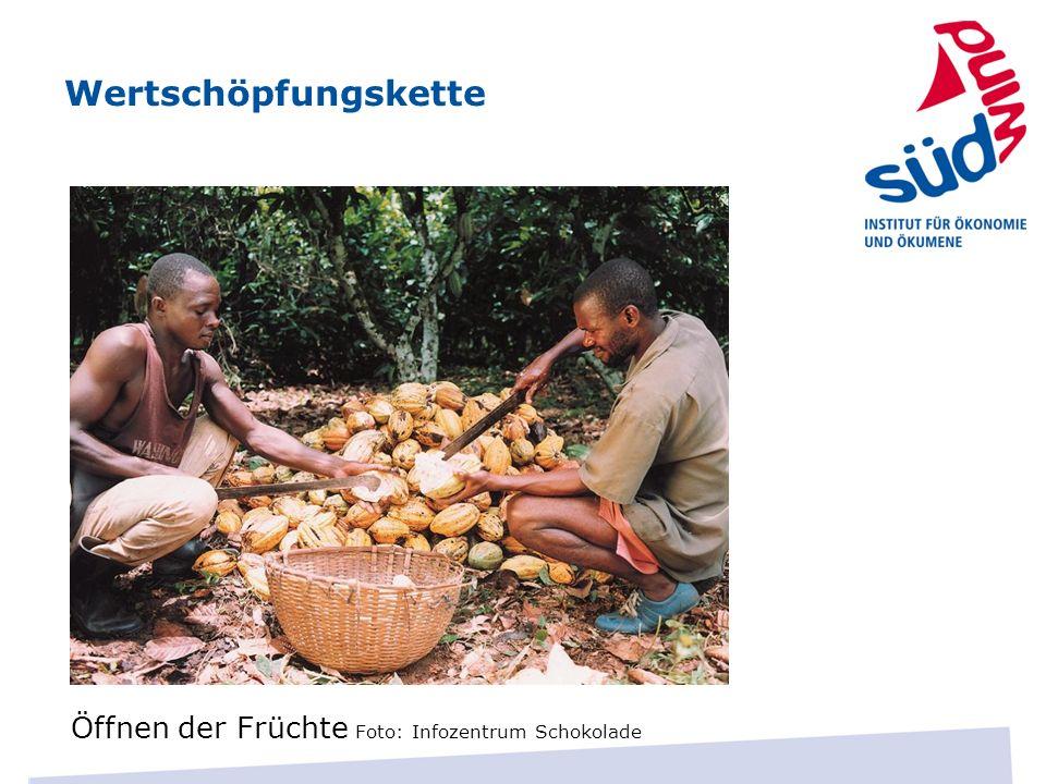 Wertschöpfungskette Öffnen der Früchte Foto: Infozentrum Schokolade