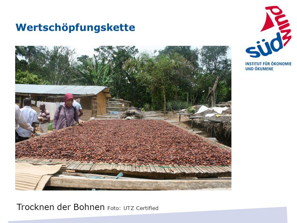 Wertschöpfungskette Trocknen der Bohnen Foto: UTZ Certified