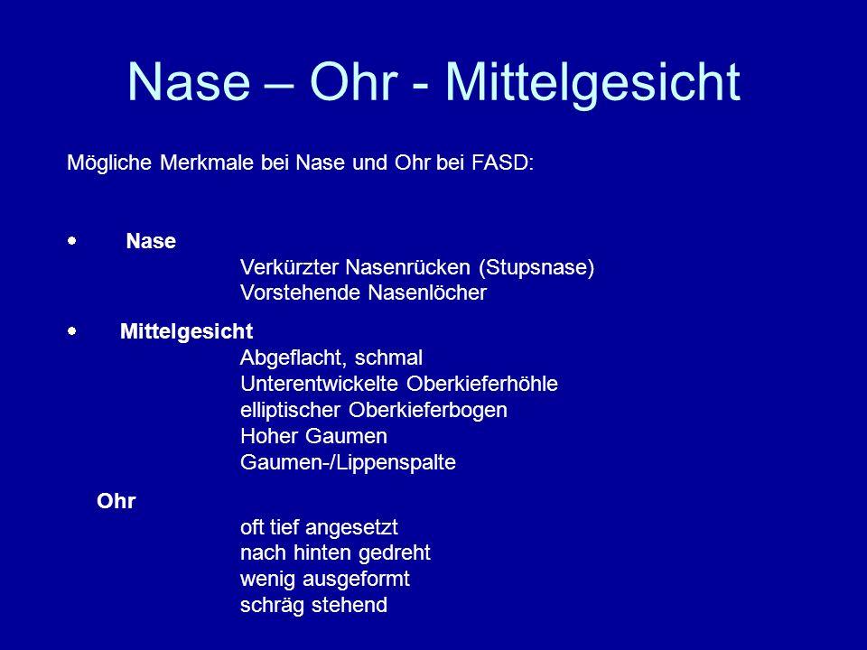 Nase – Ohr - Mittelgesicht