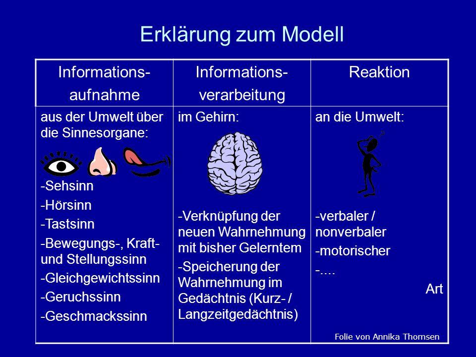 Erklärung zum Modell Informations- aufnahme verarbeitung Reaktion