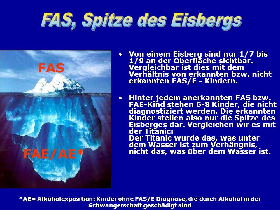 FAS, Spitze des Eisbergs