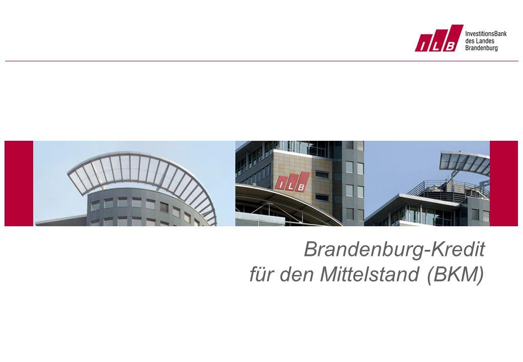 Brandenburg-Kredit für den Mittelstand (BKM)