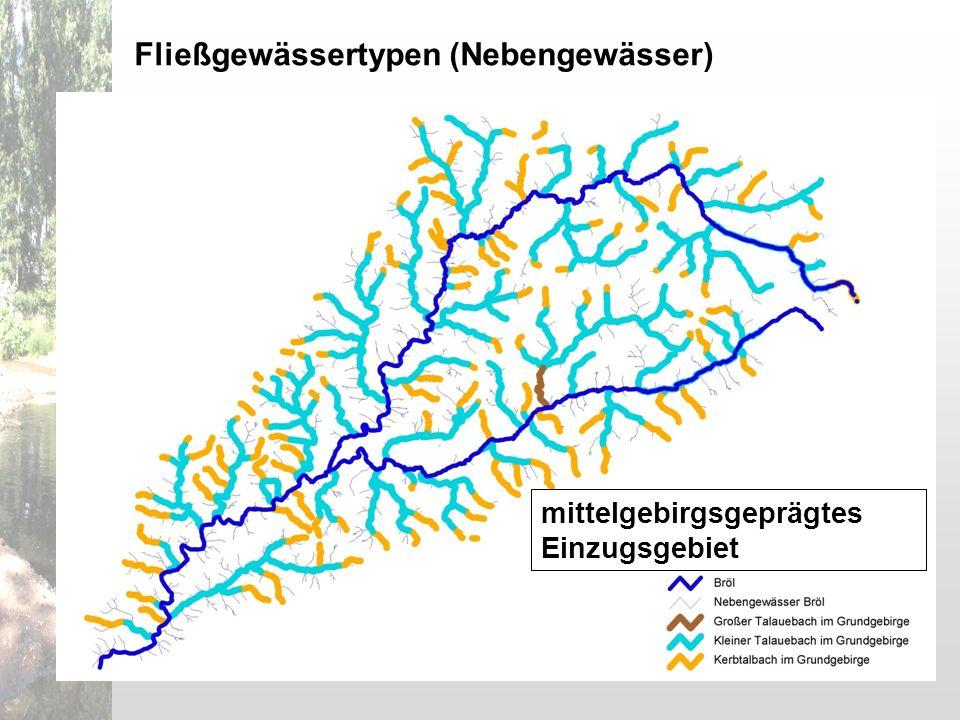 Fließgewässertypen (Nebengewässer)