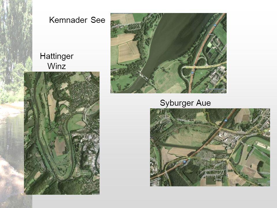 Kemnader See Hattinger Winz Syburger Aue