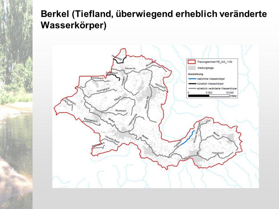 Berkel (Tiefland, überwiegend erheblich veränderte Wasserkörper)