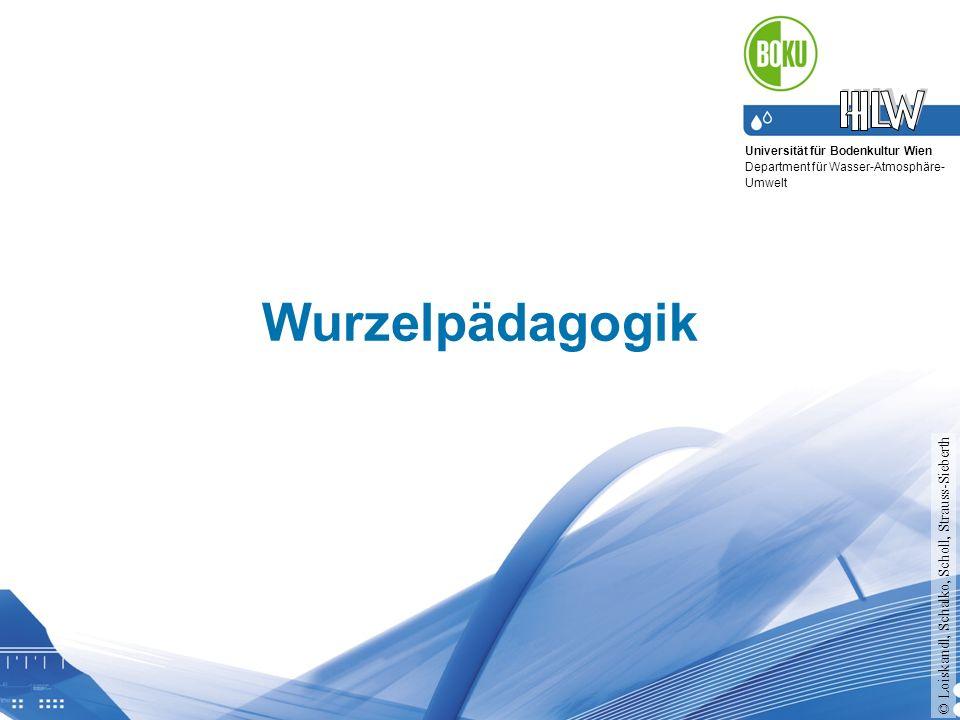 Wurzelpädagogik © Loiskandl, Schalko, Scholl, Strauss-Sieberth