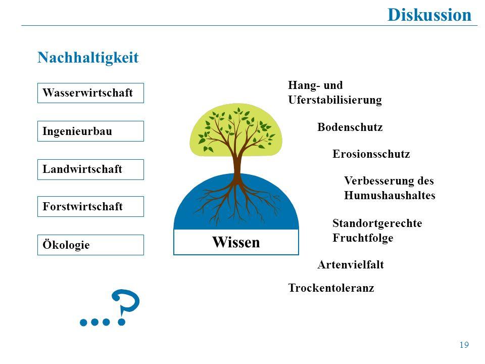 Diskussion Nachhaltigkeit Wissen Hang- und Uferstabilisierung