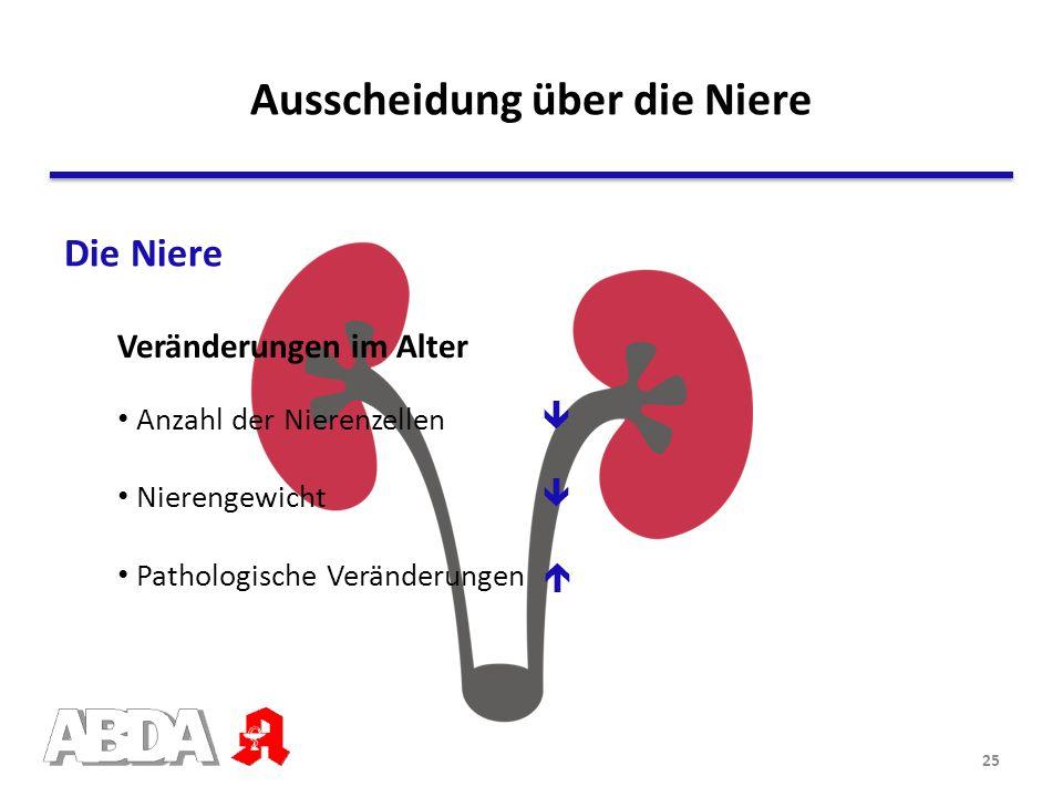 Ausscheidung über die Niere