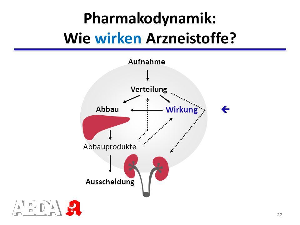 Pharmakodynamik: Wie wirken Arzneistoffe