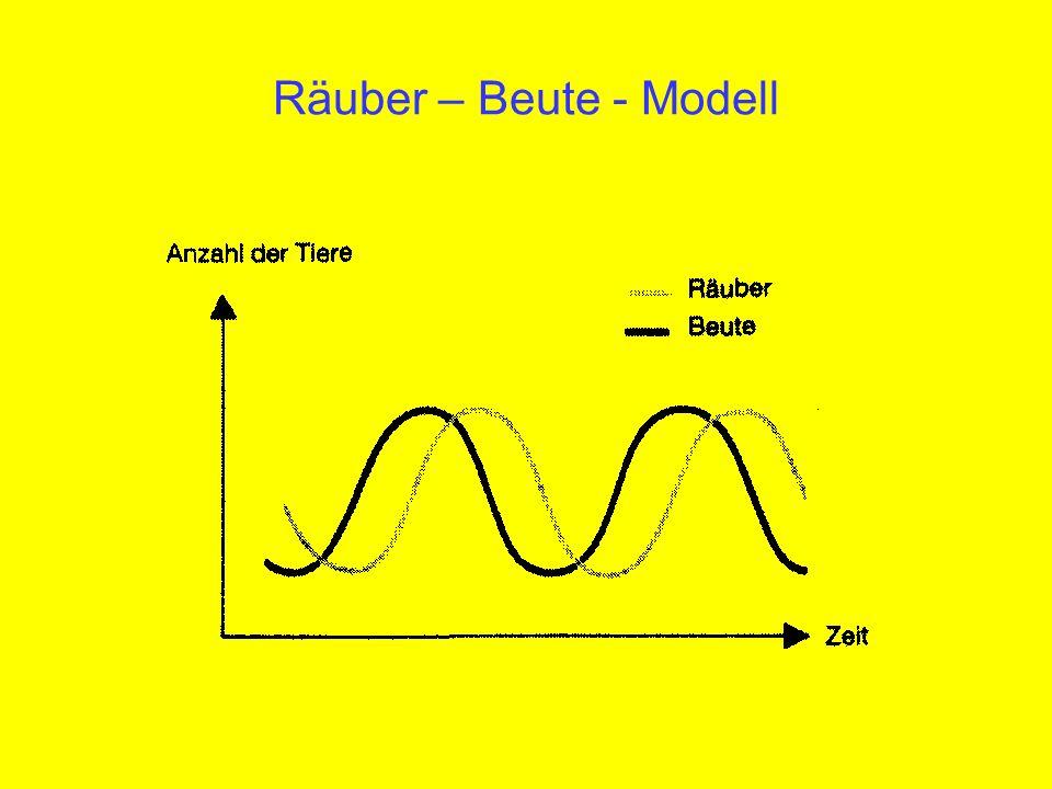 Räuber – Beute - Modell