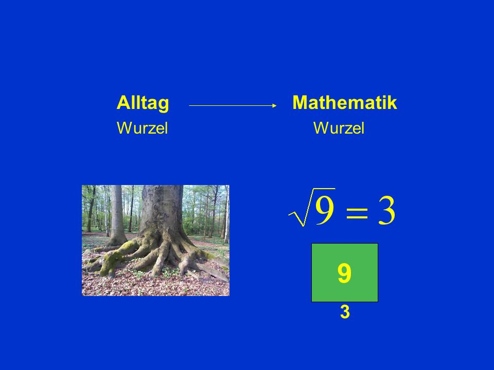 Alltag Mathematik Wurzel Wurzel 9 3