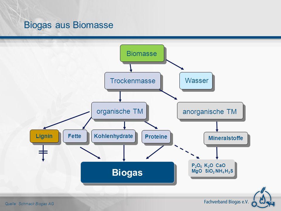 Biogas aus Biomasse Biogas Biomasse Trockenmasse Wasser organische TM