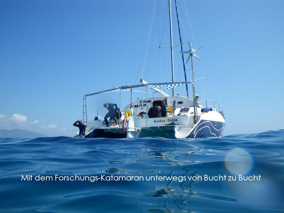 Mit dem Forschungs-Katamaran unterwegs von Bucht zu Bucht