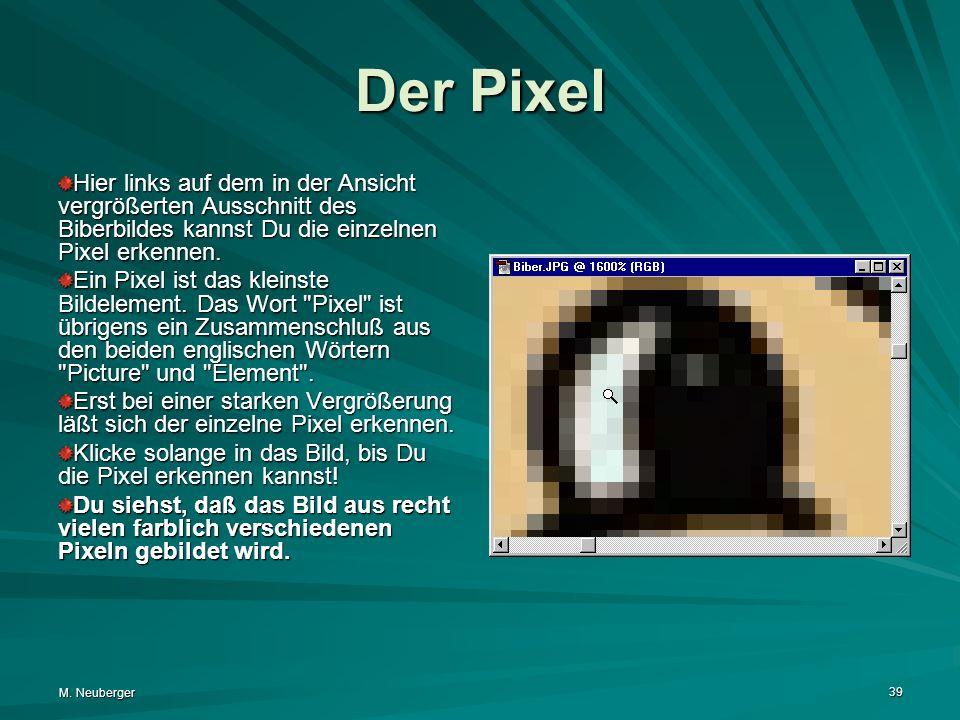 Der Pixel Hier links auf dem in der Ansicht vergrößerten Ausschnitt des Biberbildes kannst Du die einzelnen Pixel erkennen.