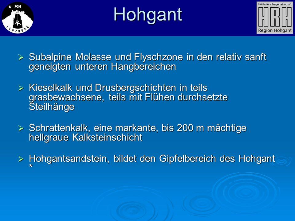 Hohgant Subalpine Molasse und Flyschzone in den relativ sanft geneigten unteren Hangbereichen.