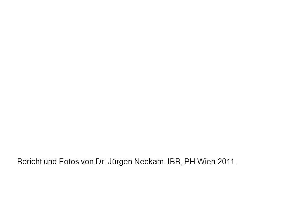 Bericht und Fotos von Dr. Jürgen Neckam. IBB, PH Wien 2011.