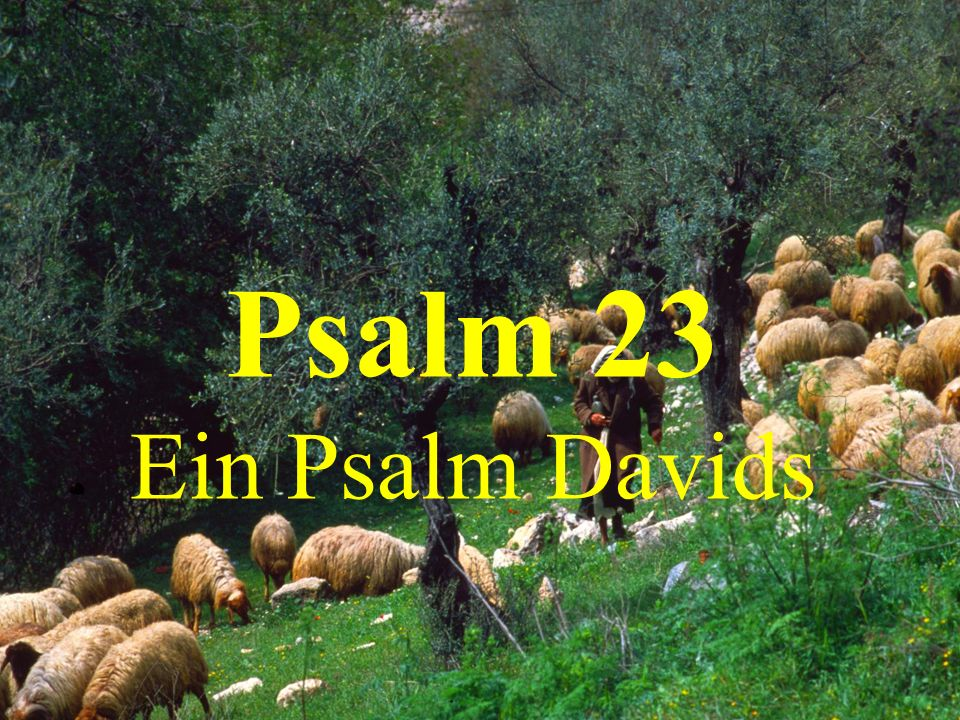 Psalm 23 Ein Psalm Davids