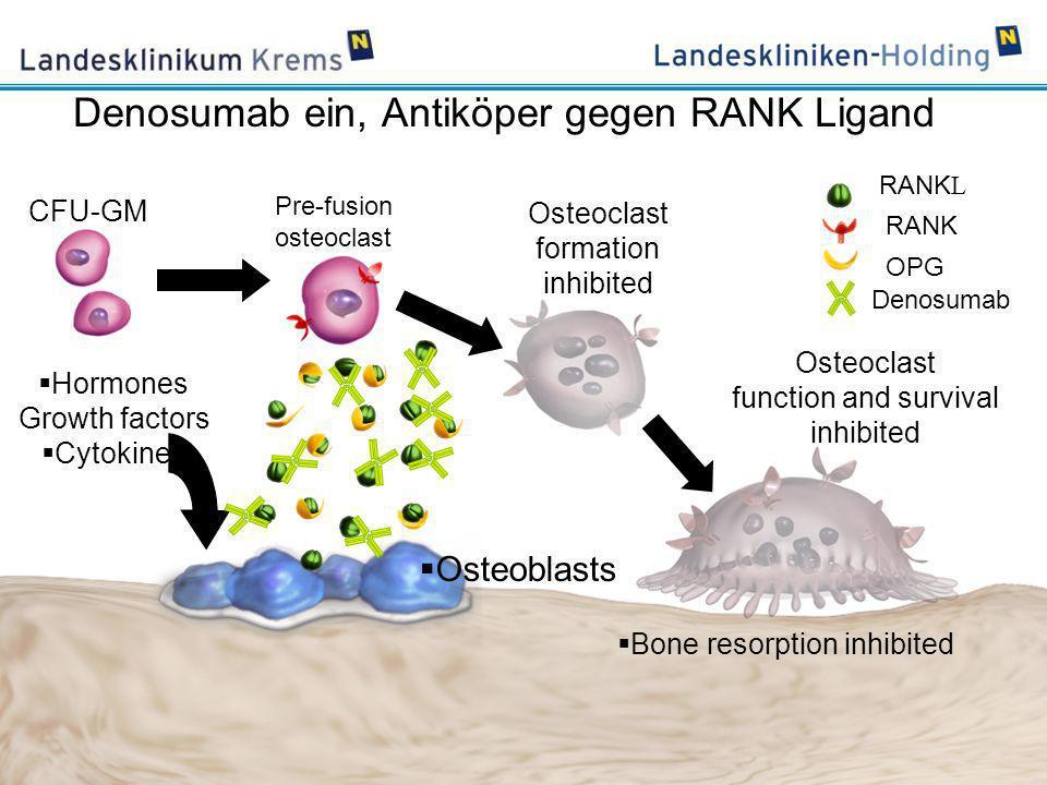 Denosumab ein, Antiköper gegen RANK Ligand