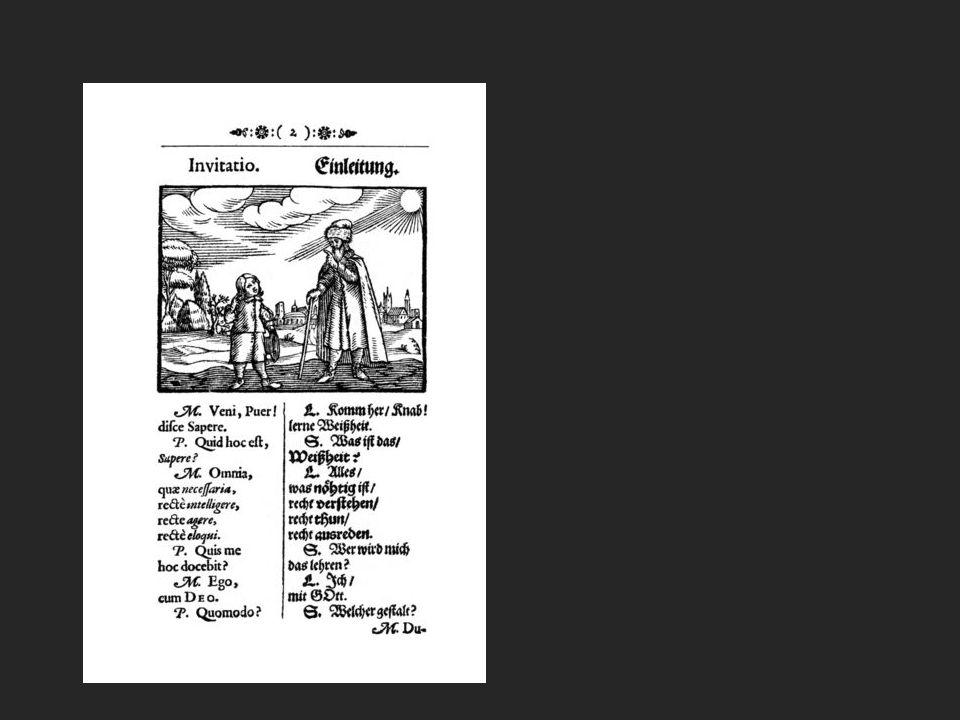 Das Werk kann zugleich als die Erfindung des Schulbuchs, als ein Vorläufer des Comics und als erstes tatsächlich multimediales Unterrichtsmaterial gesehen werden.
