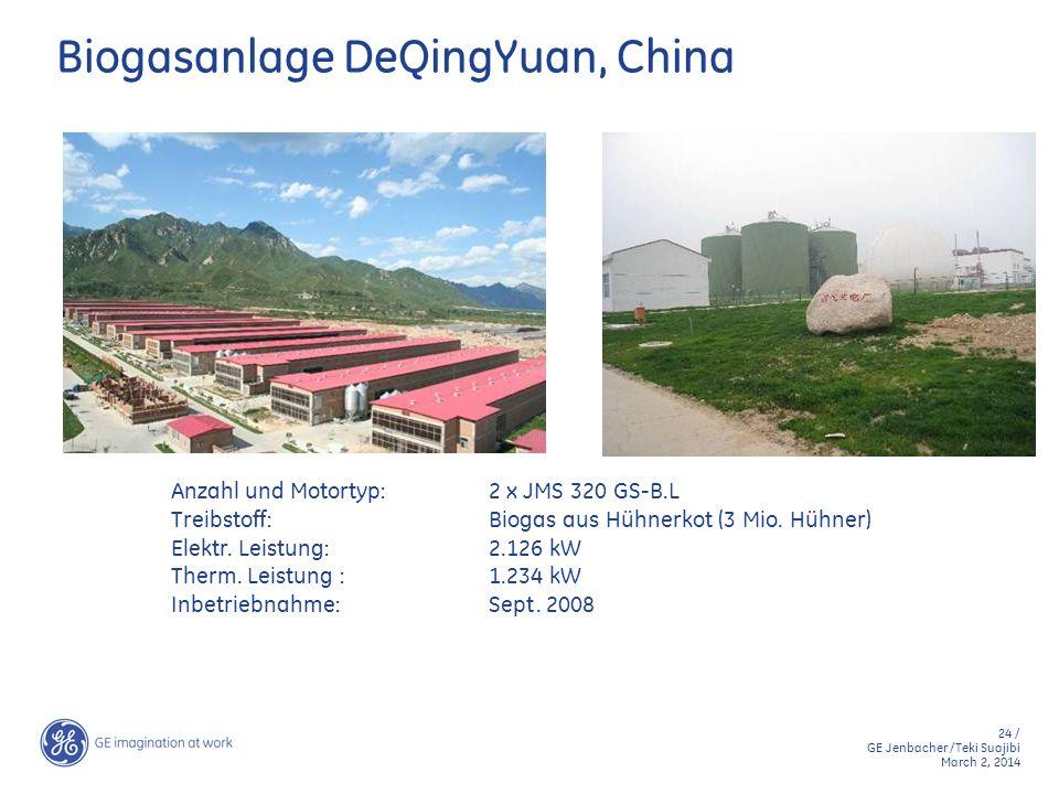 Biogasanlage DeQingYuan, China