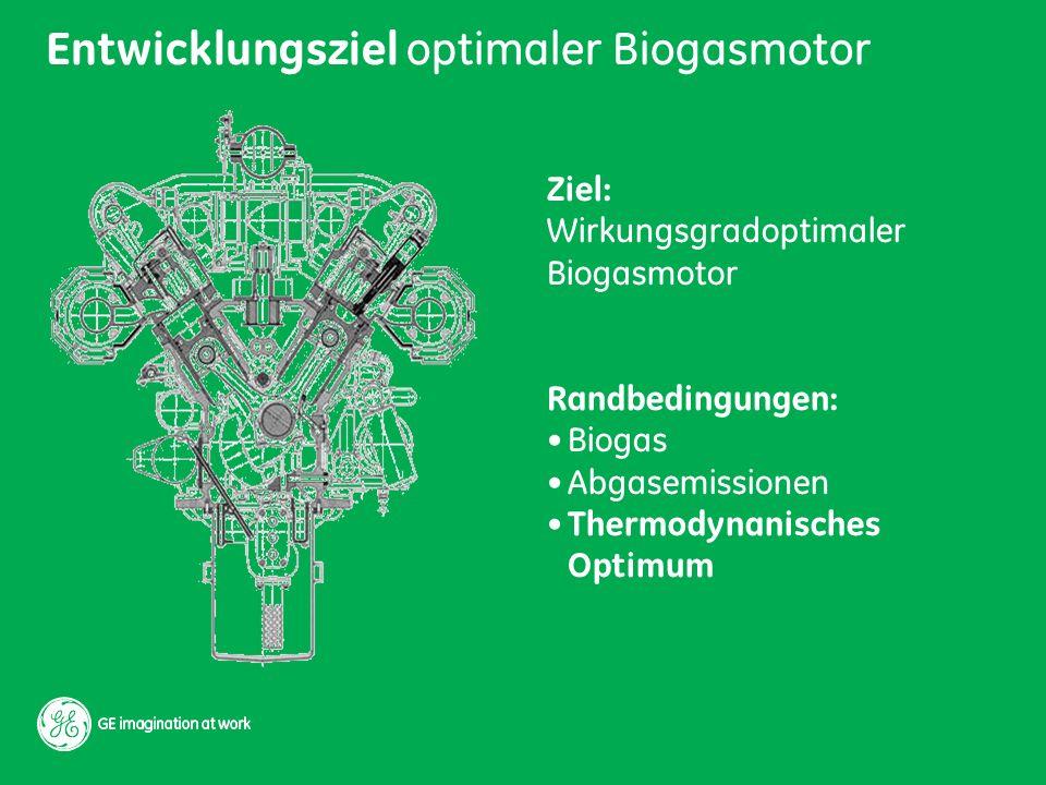 Entwicklungsziel optimaler Biogasmotor
