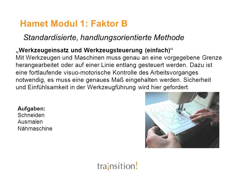 Hamet Modul 1: Faktor B Standardisierte, handlungsorientierte Methode