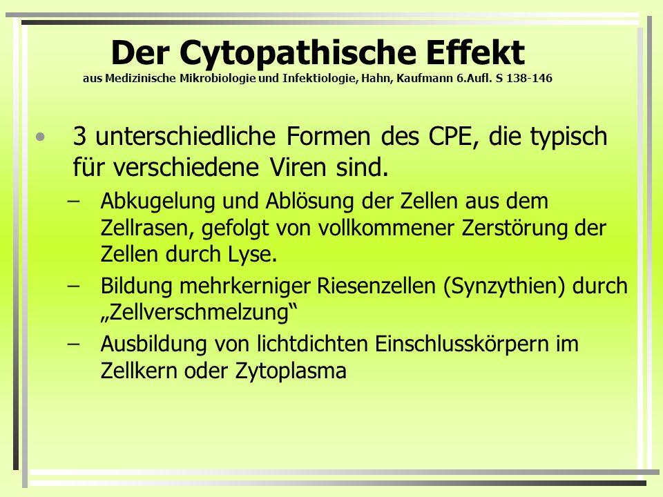 Der Cytopathische Effekt aus Medizinische Mikrobiologie und Infektiologie, Hahn, Kaufmann 6.Aufl. S 138-146