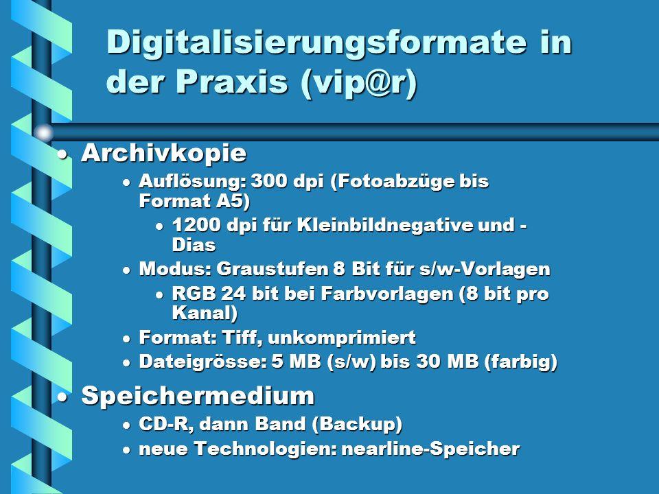 Digitalisierungsformate in der Praxis (vip@r)