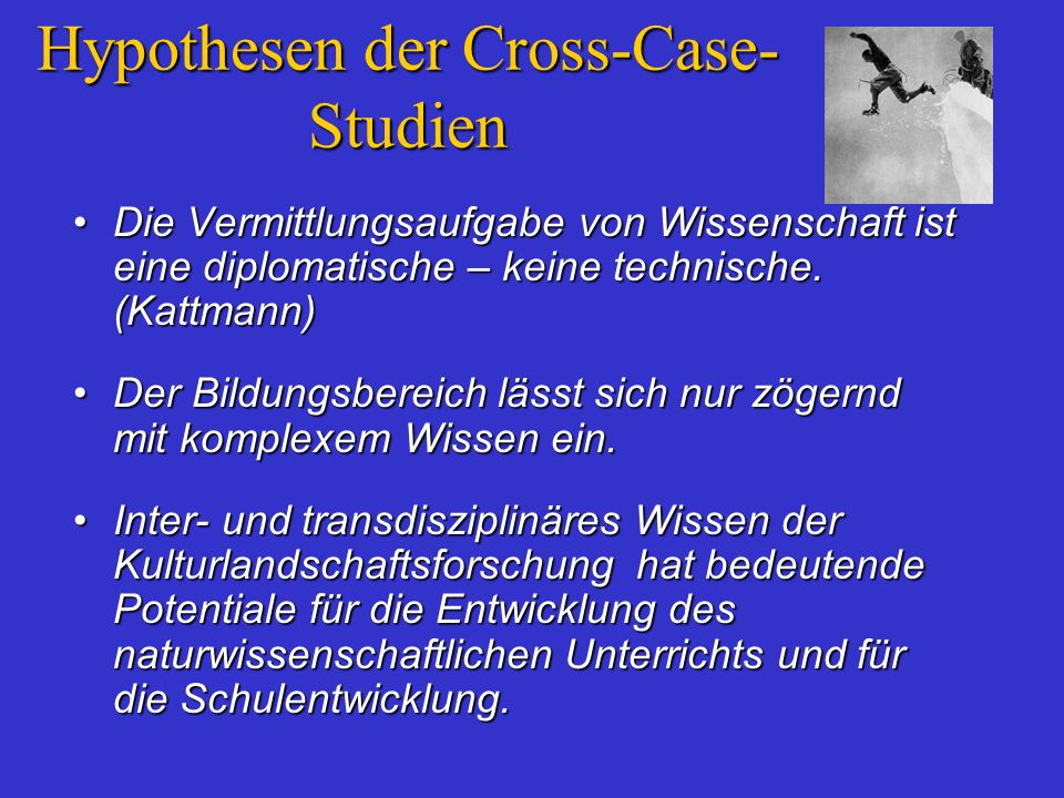 Hypothesen der Cross-Case-Studien