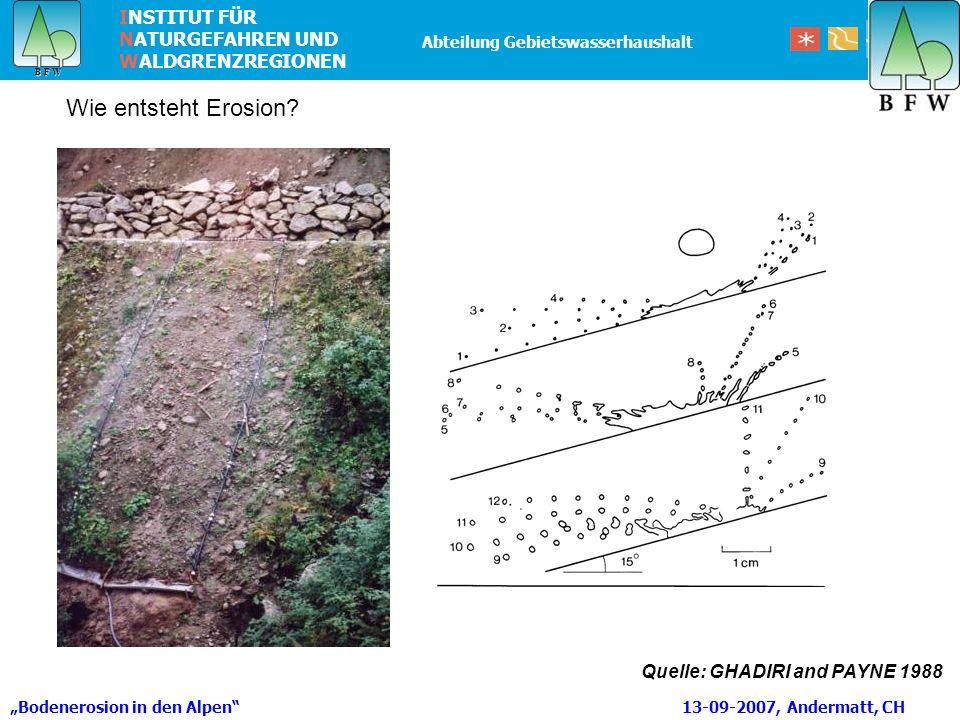 Sumpfdotterblume Wie entsteht Erosion Foto: H. HARTL