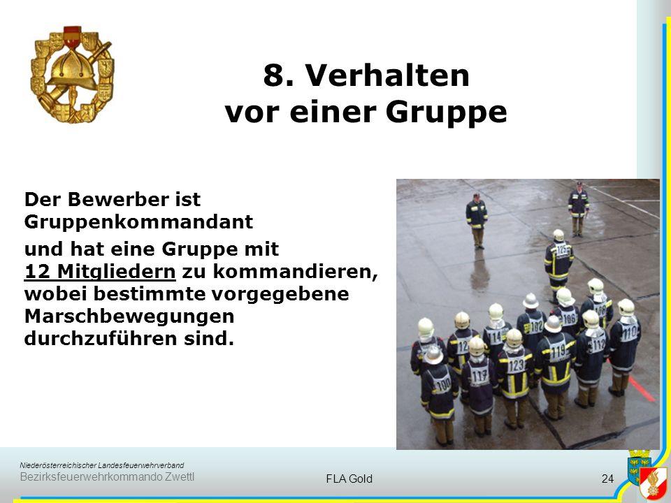8. Verhalten vor einer Gruppe