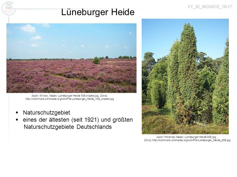 Lüneburger Heide Naturschutzgebiet