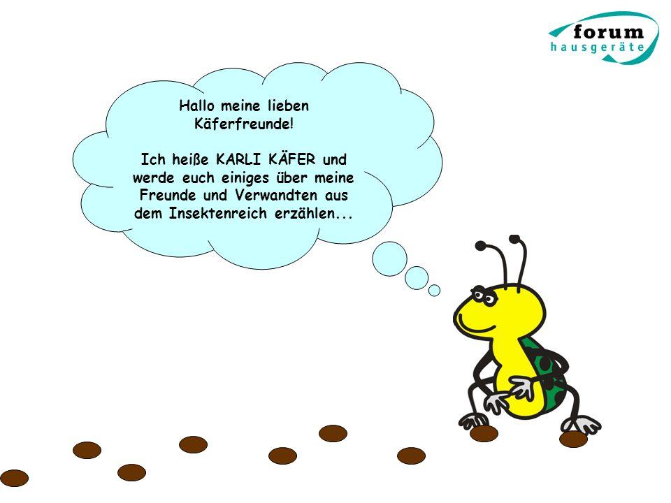 Hallo meine lieben Käferfreunde!