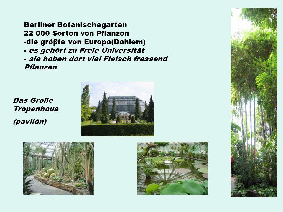 Berliner Botanischegarten