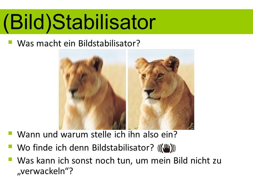 (Bild)Stabilisator Was macht ein Bildstabilisator